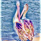 Colourful pelicans by KarenEaton