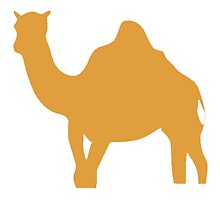 Brown Camel by kwg2200