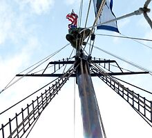 Mast Climber by phil decocco