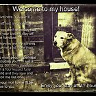 Labrador - My house not yours! by ALIANATOR