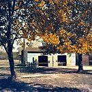Carriage House at Batsto Village  by John Rivera