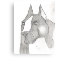 American Staffordshire Terrier Sketch Canvas Print