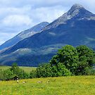 Ballachulish, Highland, Scotland by fotosic