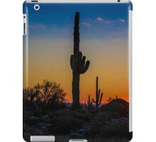Valley of the Sun iPad Case/Skin
