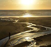 Oregon - Sunset, Newport by Robert Baker