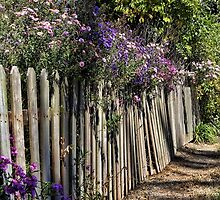 Garden Fence by vigor