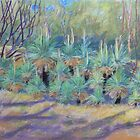 Grass Trees at Cunningham's  Gap Queensland by Virginia McGowan