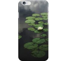 Heavenly Water iPhone Case/Skin