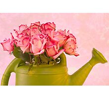 Pink Roses In Green Watering Can Photographic Print