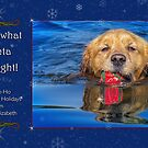 Happy Holidays from Riley & Elizabeth by Owed to Nature