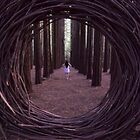 Forest Portal by Nick Sage