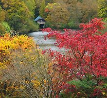 Autumn at the Boathouse` by Southernlass
