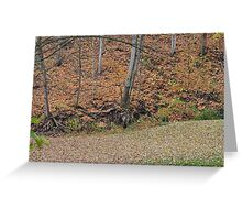 Autumn Leaves and valleys Greeting Card
