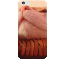 Sugarbunch Chillaxing on Chair iPhone Case/Skin
