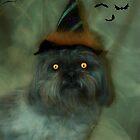 My little witch  by Nicole  Markmann Nelson