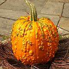 Prize Pumpkin by Kenneth Hoffman