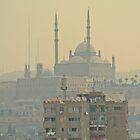 Muhammad Ali Pasha Mosque by heinrich