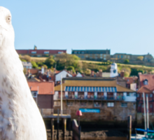 Scenic view of Whitby city and abbey with seagull  Sticker