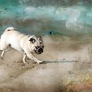 When Pugs Fly by Susan Werby