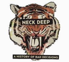 neck deep - a history of bad decisions  by storysofar