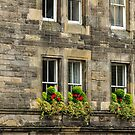 Upper Bow, Edinburgh, Scotland by fotosic