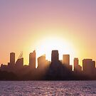 Sydney's Evening by Jola Martysz