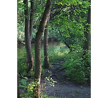 Trail Bend Photographic Print