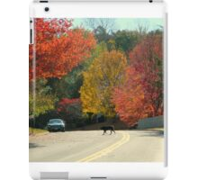 Fall Walk in my Neighborhood-Virginia     ^ iPad Case/Skin