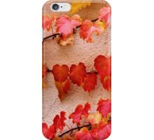 Clinging iPhone Case/Skin