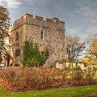 Abbey Gatehouse  by Dave Godden