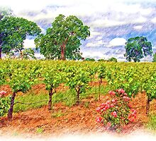 Vineyard Roses by shutterbug941