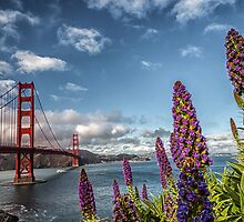 Golden Gate Bridge by svenstork