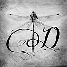 D is for Dragonfly by Kara  Rasmanis