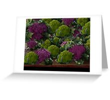 BEAUTIFUL PURPLE & GREEN CAULIFLOWER-PICTURE,TOTE BAG,TRAVEL MUGS,PILLOWS..ECT.. Greeting Card
