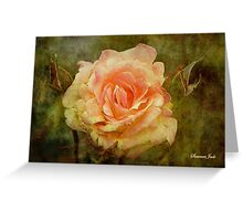 Damaged ~ a Rose with a Message Greeting Card