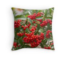 red berries in the garden Throw Pillow
