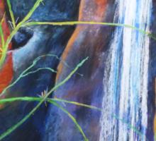 Falls St Bernards Tamborine -pastel Sticker