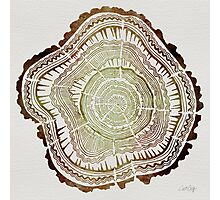 Tree Rings – Watercolor Photographic Print