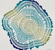 Tree Rings – Watercolor Ombre by Cat Coquillette