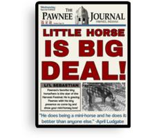 Little Horse is Big Deal! Canvas Print