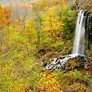 Falling Spring Falls by Karen Peron