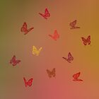 Rainbow Butterflies by M.S. Photography/Art