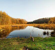 Dreamy lake by Ovation66