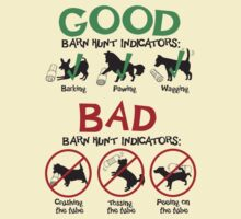 Good and Bad Barn Hunt Indicators by littleredrosie