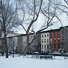 Van Vorst Park, Snow View, Jersey City, New Jersey by lenspiro