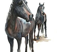 Why the Long Face by Denise Faulkner