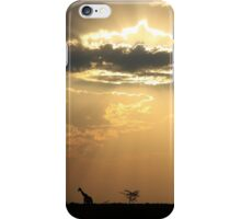 Giraffe Background - Sky Light Wanderer iPhone Case/Skin