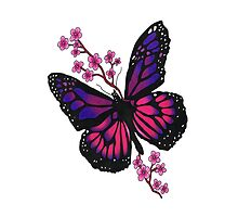 butterfly with blossom by Seymour  Art