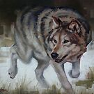 Grey Wolf On The Move by Margaret Stockdale
