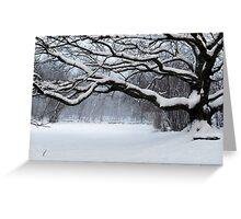 Ice Age - Old Oak Greeting Card
